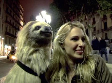 sloth5